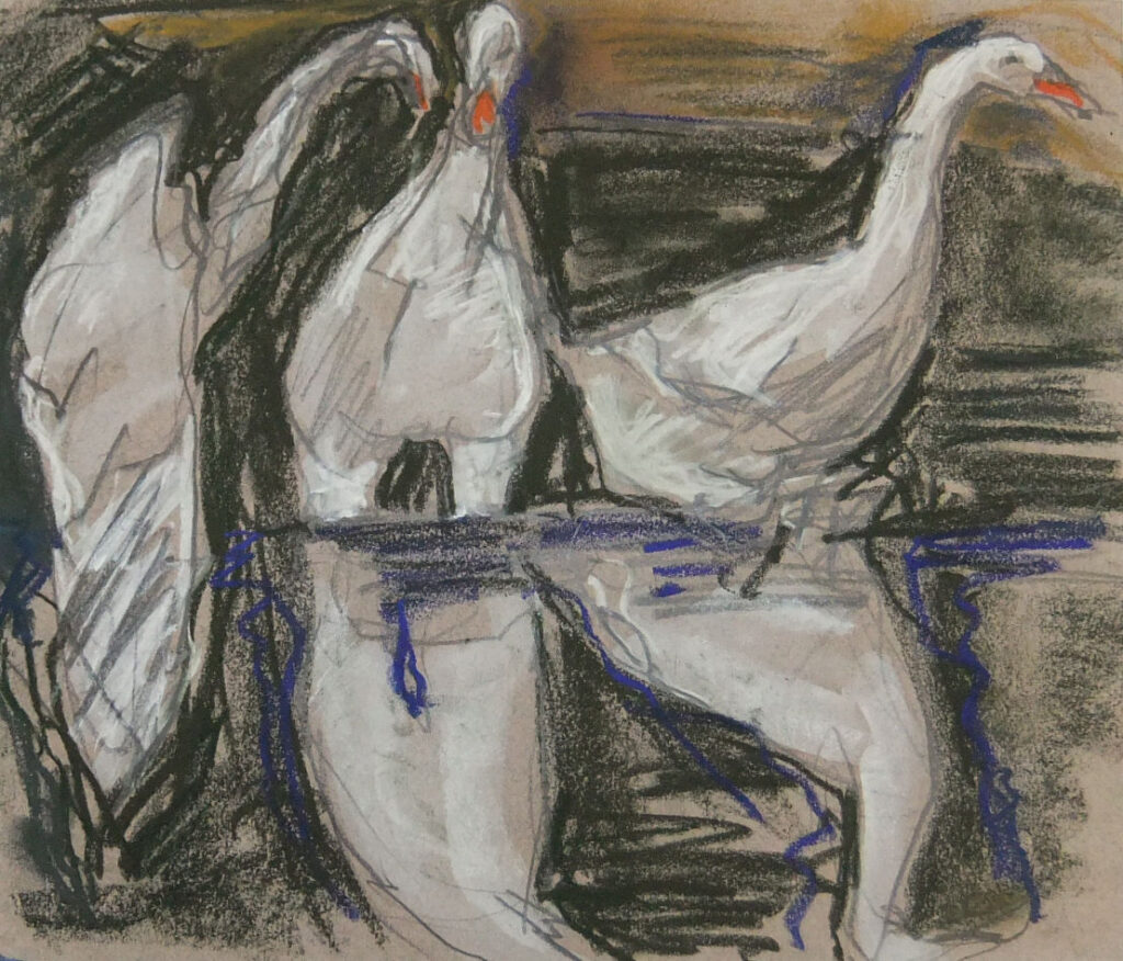 Geese (charcoal, pastel)
